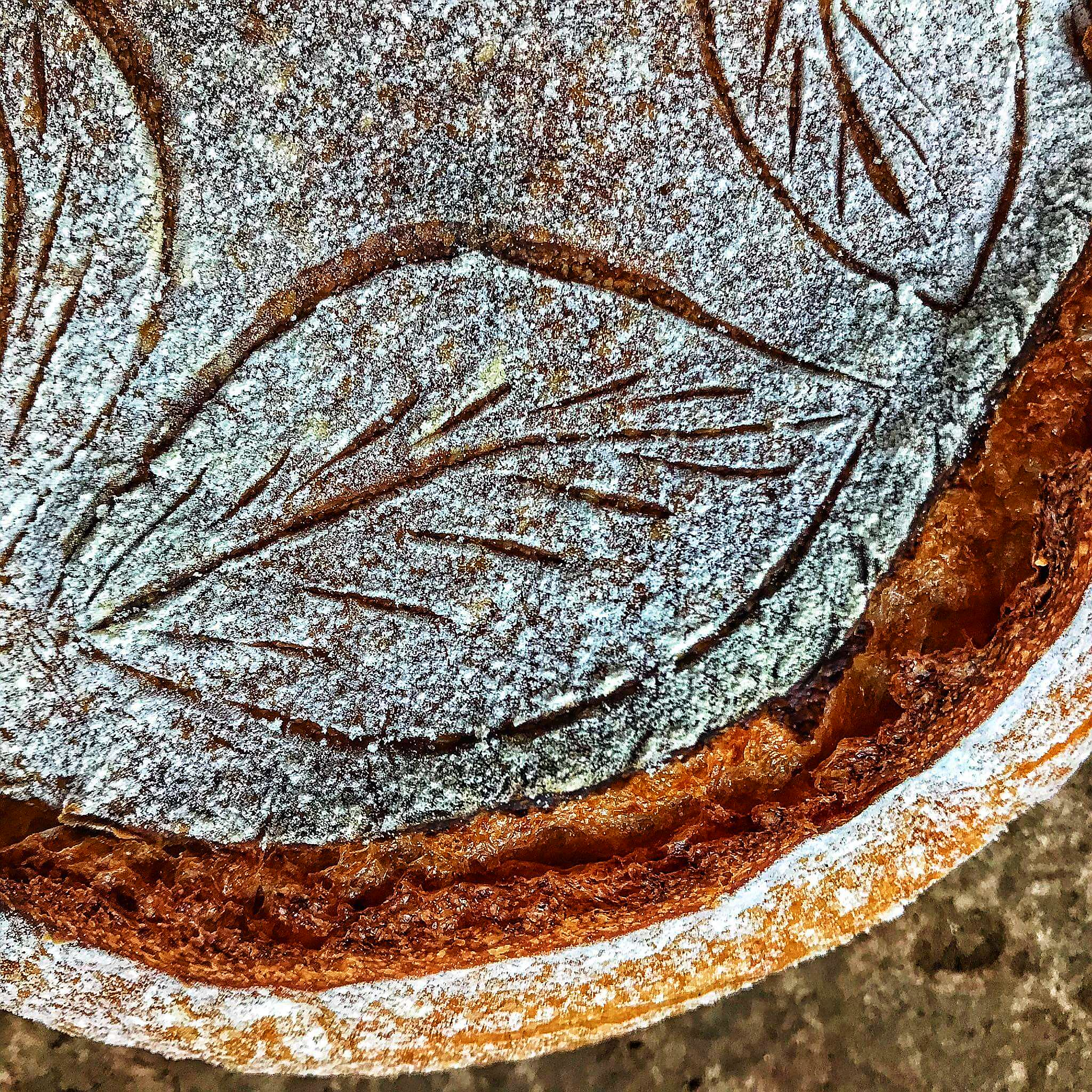 unica bul bread leaven top brand