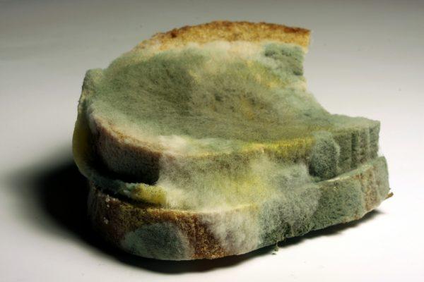 bread additive anti mould