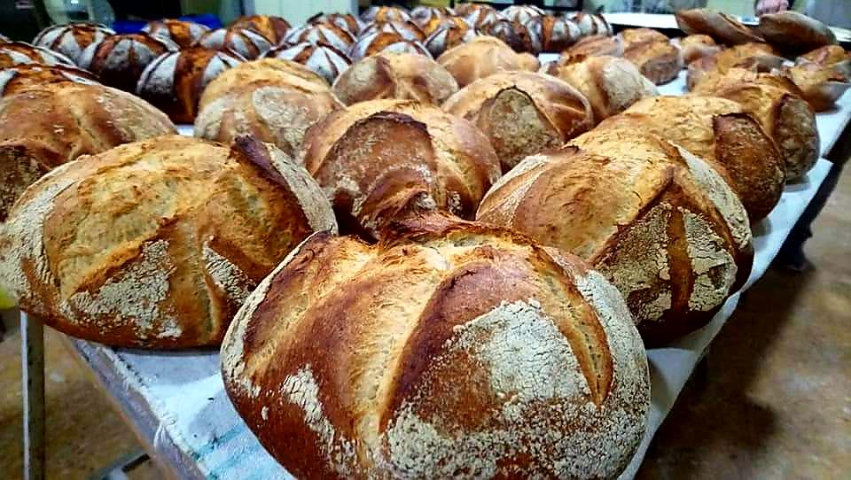 bread improver max-way
